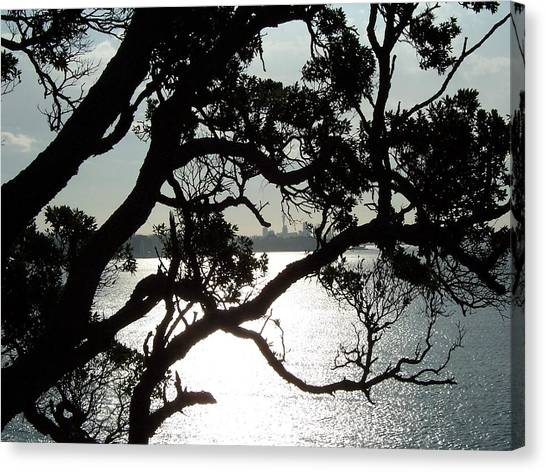 View Of Auckland Canvas Print by Peter Mooyman