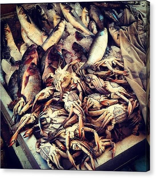 Seafood Canvas Print - Vinage Pic Alexandria Fresh Fish & Crab by Kareem Nour