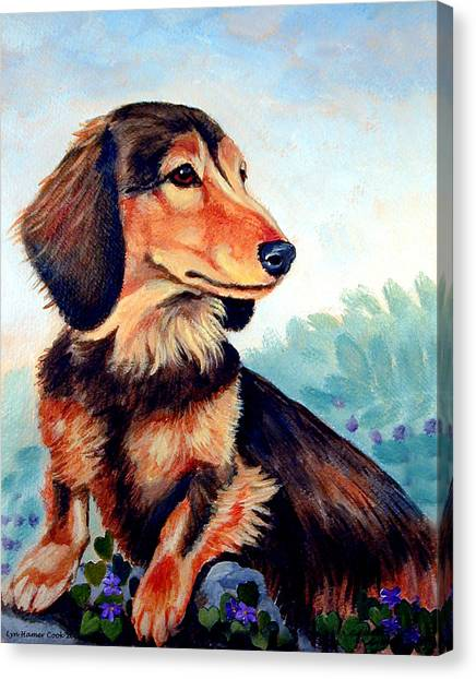 Dachshunds Canvas Print - Violets - Dachshund by Lyn Cook