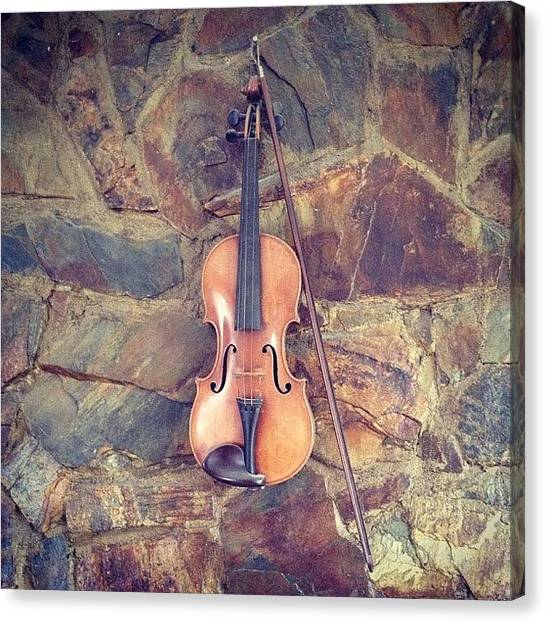 Music Canvas Print - Violin by Peter McD