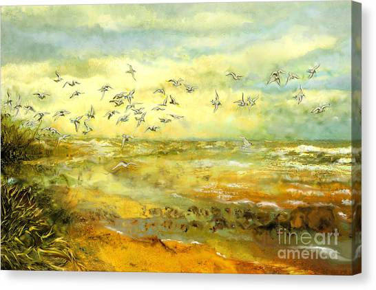 Wadden Sea Canvas Print by Anne Weirich