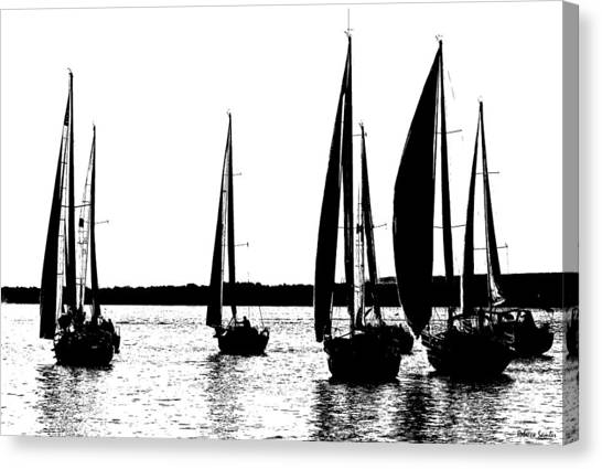 Waiting On The Wind Canvas Print