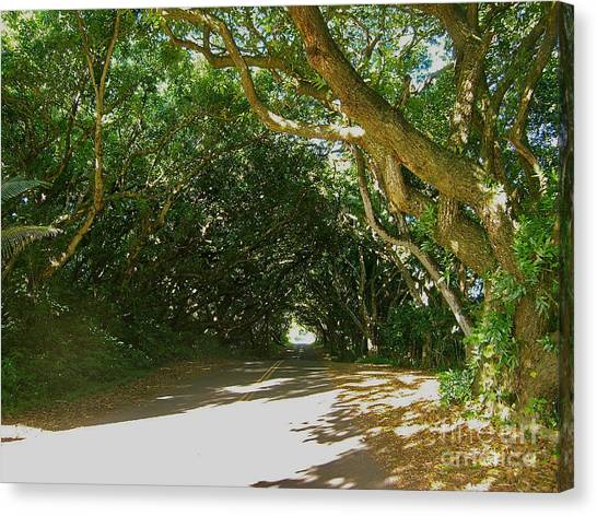 Canvas Print - Wandering Road by Silvie Kendall