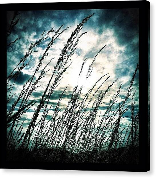 Social Canvas Print - Wasteland by Mark B