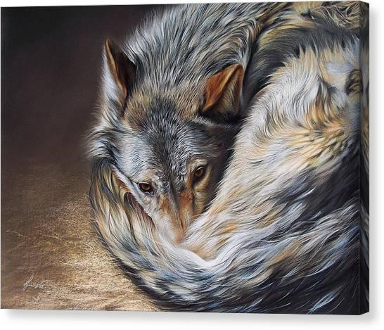 Watchful Rest Canvas Print