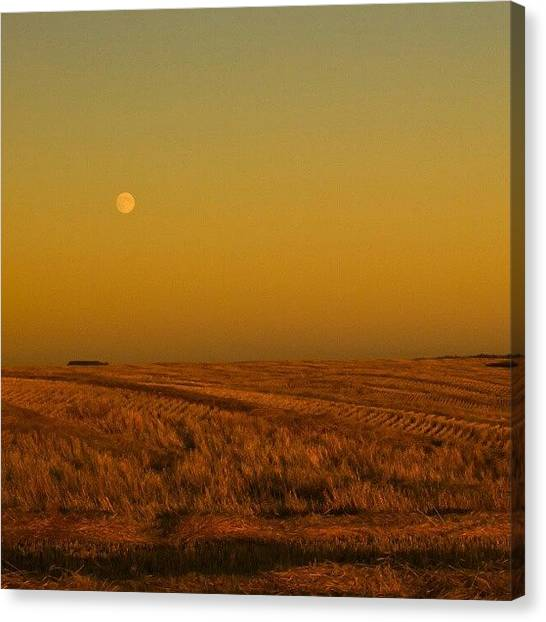 Harvest Canvas Print - Watching Over The #harvest. #moon by Michael Squier