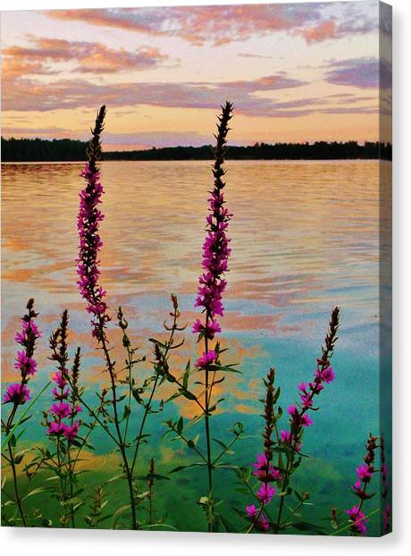 Water Colors Canvas Print by Virginia Lei Jimenez