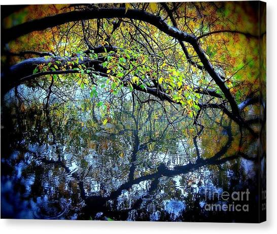 Water Cove Canvas Print by Maria Scarfone