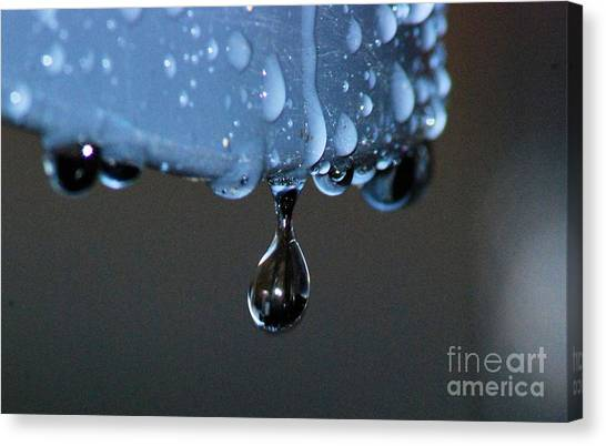 Water Drop Canvas Print
