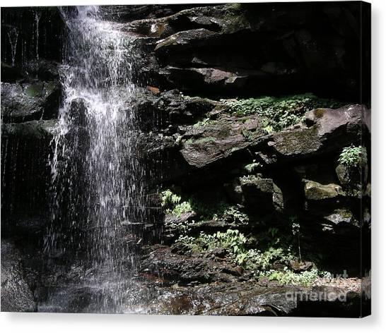 Water Figure Waterfall Canvas Print