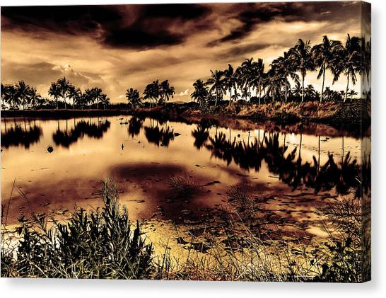 Water Canvas Print by Nicky Ledesma
