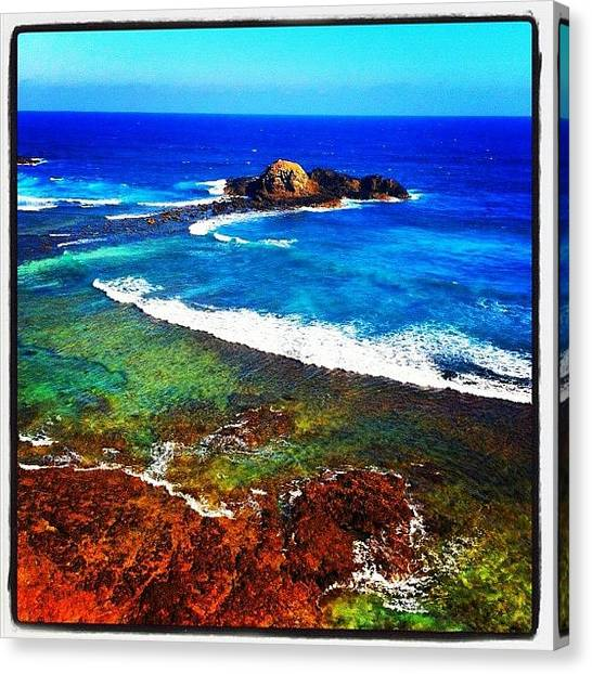 Reef Sharks Canvas Print - #water #rocks #reef  #iphone #igdaily by Kirk Roberts