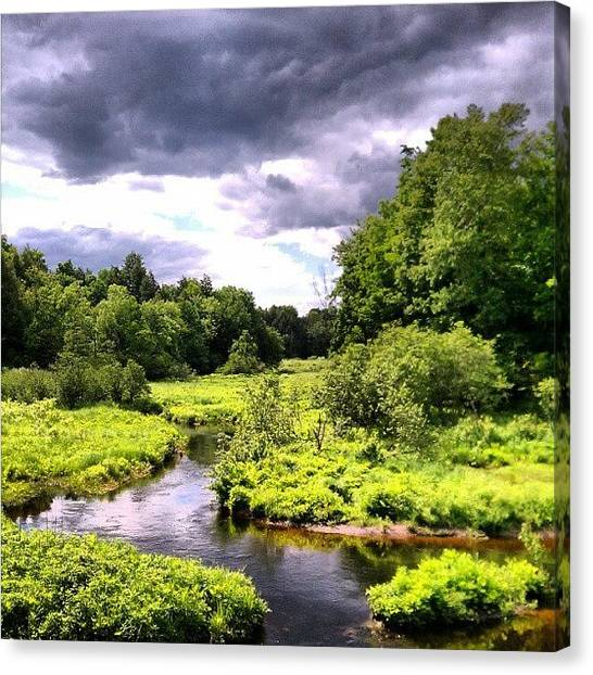 Fishing Canvas Print - #water #stream #woods #outdoors by Dan Piraino