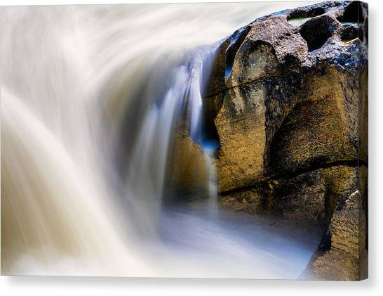 Water Ways Canvas Print