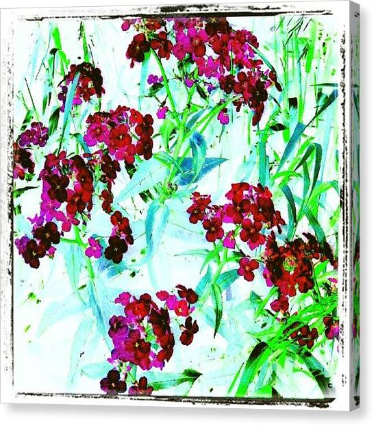 Abstract Flowers Canvas Print - Watercolor Garden #android # by Marianne Dow