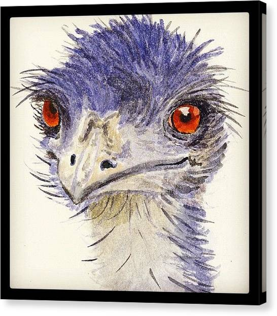 Large Birds Canvas Print - Watercolour Sketch Of Emu by Ruca Cao