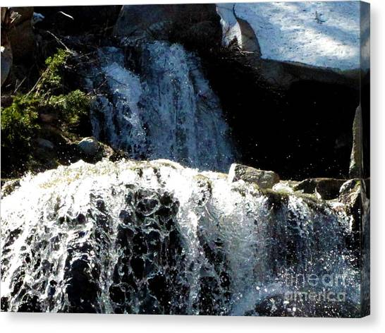 Waterfall 4 Canvas Print