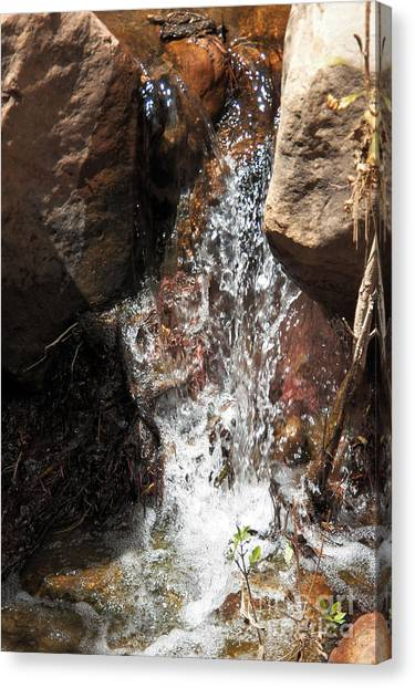 Waterfall Canvas Print by Ashiley Slaymaker