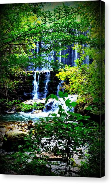 Waterfall Canvas Print by Charles Covington