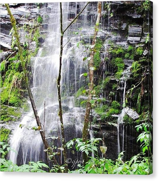 Rainforests Canvas Print - Waterfall In A Rainforest. Imagine by Cynthia Post