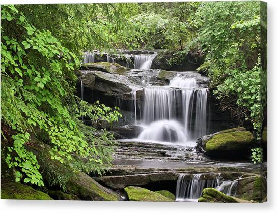 Waterfall Near Mabbitt Spring Canvas Print
