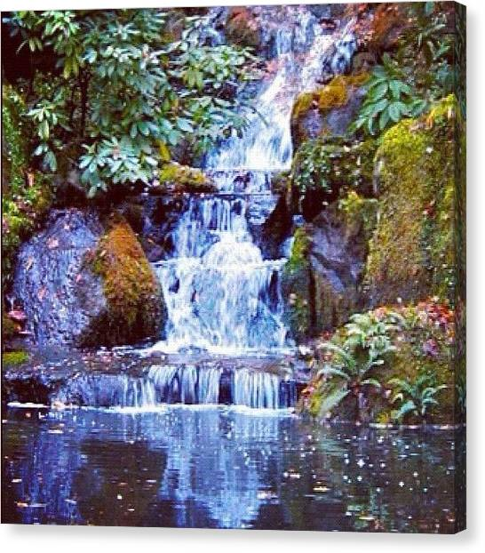 Koi Canvas Print - Waterfall - Portland Japanese Garden Portland Or by Anna Porter