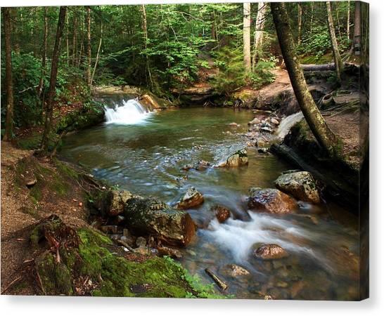 Waterfalls At The Basin Canvas Print by David Gilman