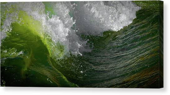 Wave In Motion Canvas Print