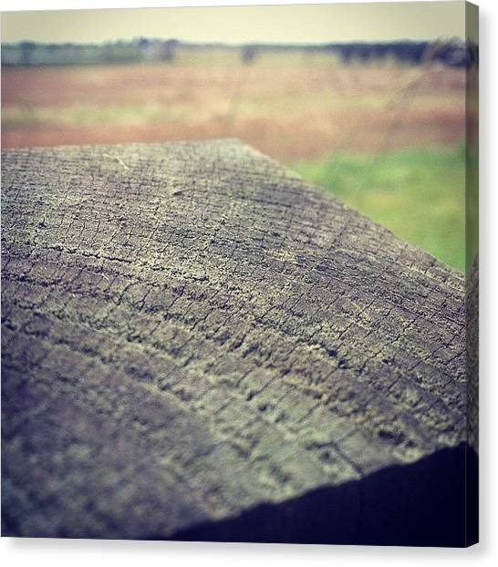 Farmers Canvas Print - We Are All Made Up Of Years. Just Like by Liam James Mcdonald