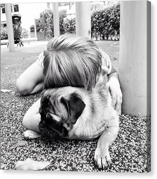 Pugs Canvas Print - We Love Each Other by Zachary Voo