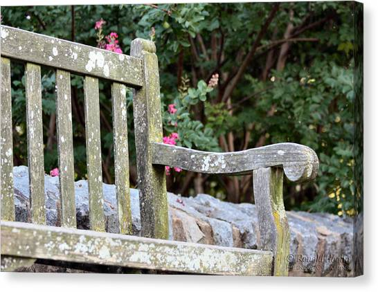 Weathered Bench Canvas Print