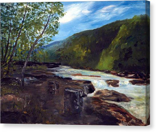Webster Springs Stream Canvas Print