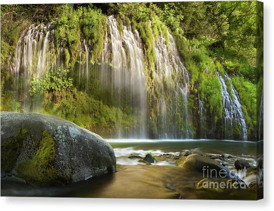 Weeping Wall Canvas Print