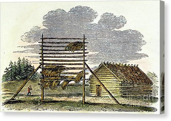 Indian Corn Canvas Print - West: Swedish Log Cabin by Granger
