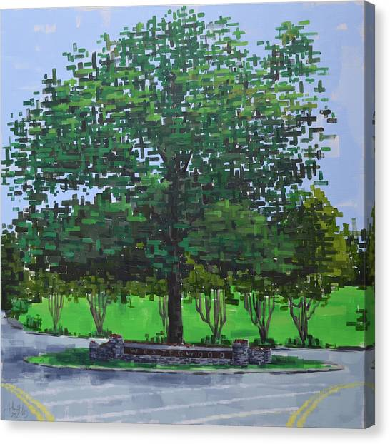 Canvas Print featuring the painting Westerwood Tree by John Gibbs