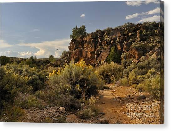 Westward Across The Mesa Canvas Print