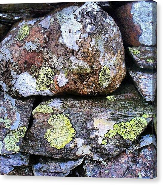 Wet Canvas Print - Wet Dry Stone Wall by Nic Squirrell