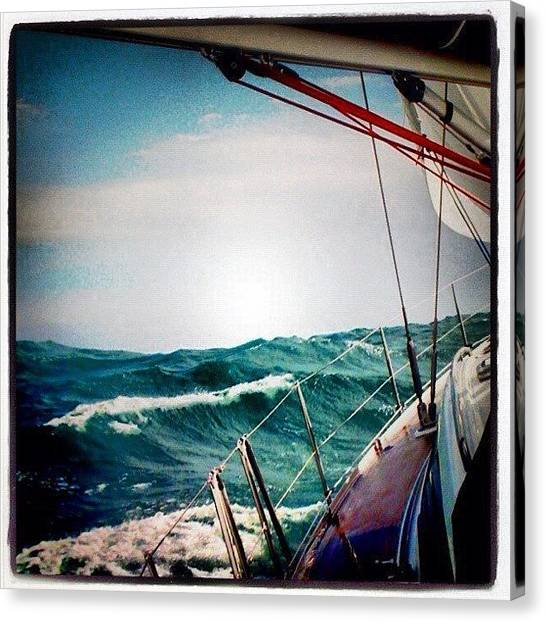 Ocean Animals Canvas Print - What A Nice Weather For Sailing :) by Yalin Tuna