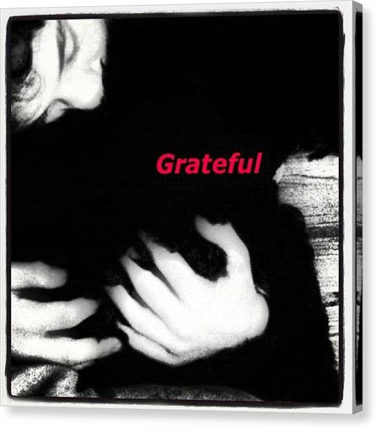 Thanksgiving Canvas Print - What Are You Grateful For? by Kim Cafri