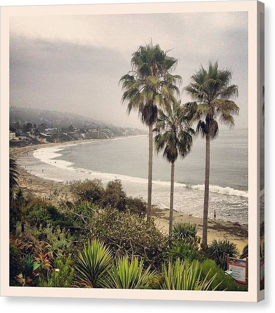 Soda Canvas Print - What's Not To Love? by Soda Love
