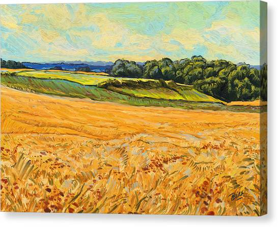 Briex Canvas Print - Wheat Field In Limburg by Nop Briex