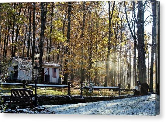 Where Fall Meets Winter Canvas Print by Jennifer Compton