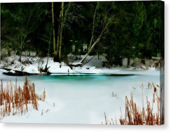 Whisper Canvas Print by Donna Duckworth
