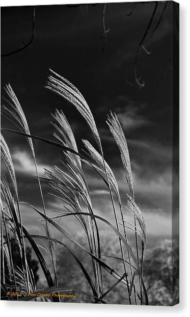 Whispering Wind Canvas Print by Dan Crosby