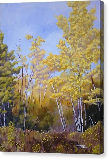 White Bark Yellow Leaves Canvas Print