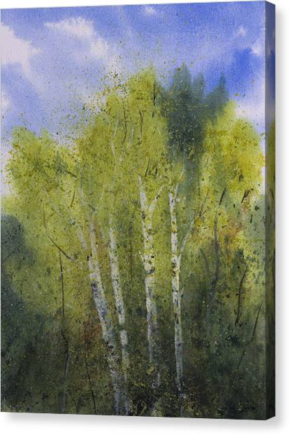 White Birch Trees Canvas Print by Debbie Homewood