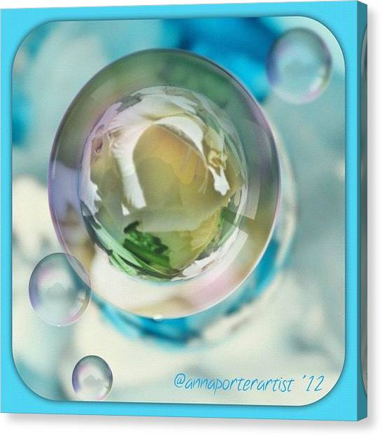 Apples Canvas Print - White Gladiola Marble In A Bubble by Anna Porter