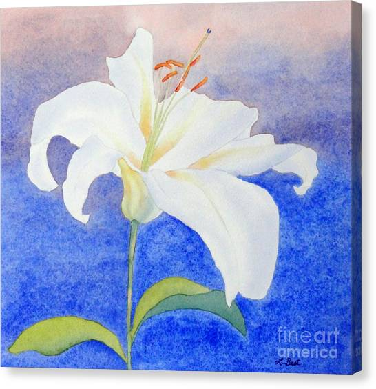 White Lily Canvas Print