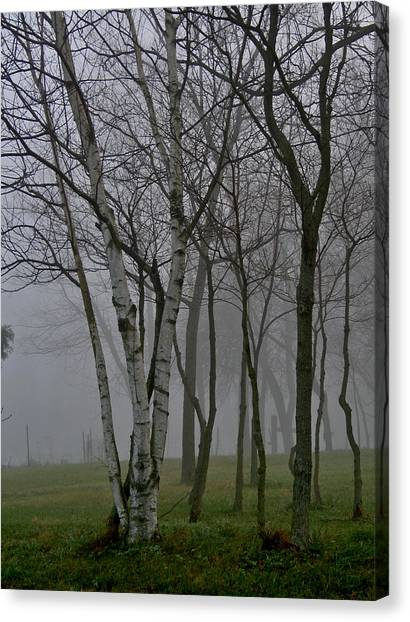White On Gray Canvas Print