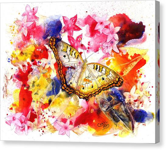 White Peacock Butterfly With Pentas Canvas Print by Art by Carol May